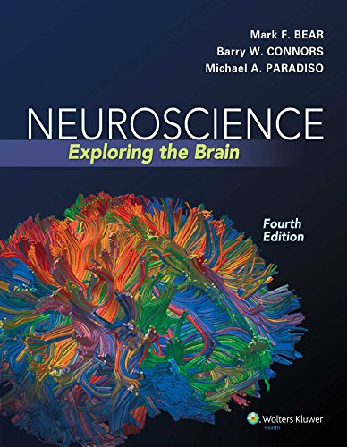 Neuroscience: Exploring the Brain Fourth, North Americ Edition by Bear PhD, Mark F., Connors PhD, Ba
