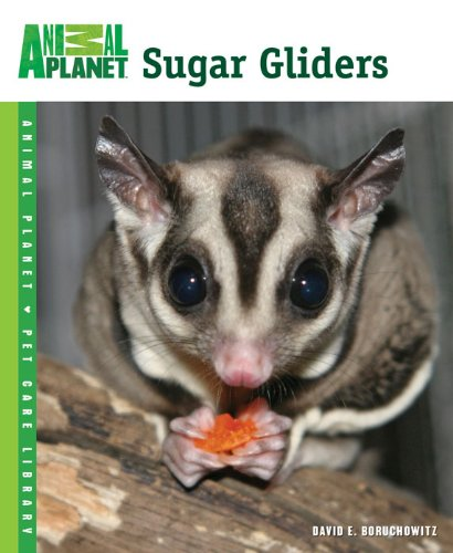 Sugar Gliders (Animal Planet® Pet Care ()