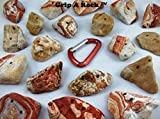 20 Rock Climbing Holds, Rock Climbing Equipment, Adult & Kids Climbing Wall
