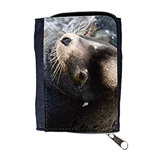 le portefeuille de grands luxe femmes avec beaucoup de compartiments // F00002677 mar sereno agua al aire libre // Purse Wallet