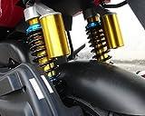 High Power High Speed 150cc Hornet SR 2