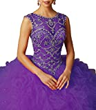 Lisa Ruffles Sheer Neck Beads Ball Gowns Quinceanera Dress With Open Back LS220