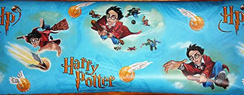 - Harry Potter and The Philosopher's Stone Illustrated 10