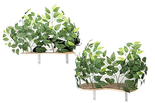 On2Pets Cat Furniture Canopy Shelves for Climbing, Playing and Relaxing, Set of 2