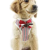 Hisoul Pet Dog Chest Straps No-Pull Stripe Tie Neck Adjustable Chest Belt Pet Outdoor Comfort Vest with Rope for Dogs Easy Control for Small Medium Large Dog ( Red, XL-Bust: 19.69''-27.56'')