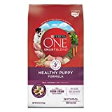 Purina ONE SmartBlend Natural Healthy Puppy Formula Dry Dog Food - 8 lb. Bag