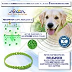 Arava Flea & Tick Prevention Collar - for Dogs & Puppies - Length-25'' - 11 Natural Active Ingredients - Safe for Babies & Pets - Safely Repels Pests - Enhanced Control & Defense - 6 Months Protection 12