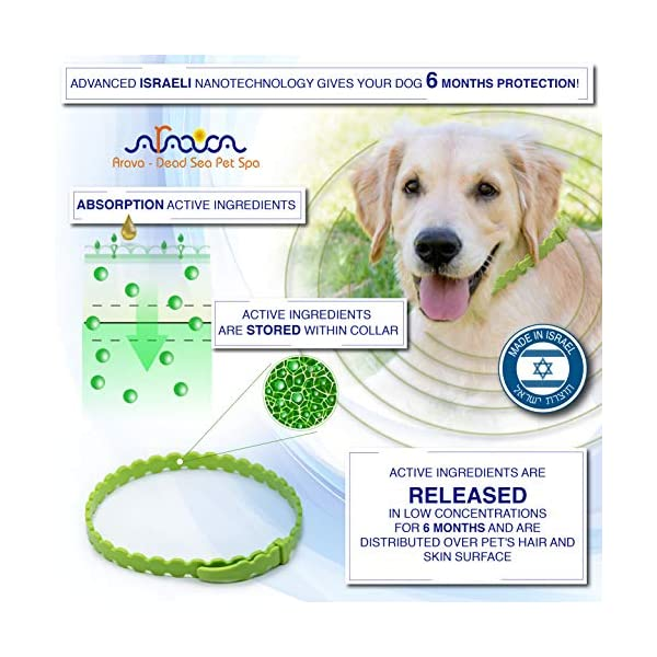 Arava Flea & Tick Prevention Collar - for Dogs & Puppies - Length-25'' - 11 Natural Active Ingredients - Safe for Babies & Pets - Safely Repels Pests - Enhanced Control & Defense - 6 Months Protection 3