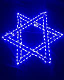 LED Star of David Holidynamics Light
