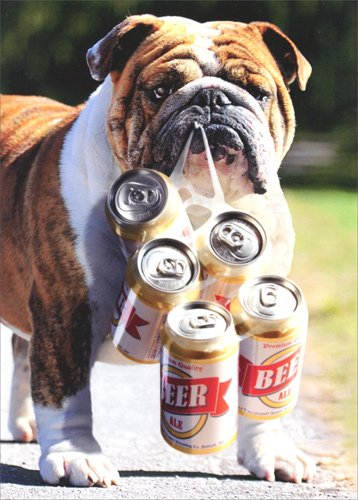 Dog Carries Six Pack - Avanti Bulldog Father's Day Card