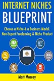 Internet Niches Blueprint: Choose a Niche & a Business Model. Non-Expert Freelancing & Niche Product Marketing.