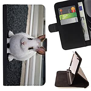 Super Marley Shop - Leather Foilo Wallet Cover Case with Magnetic Closure FOR Apple Iphone 5C- Rabbit Cute