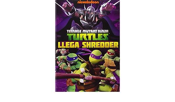 Tortugas Ninja: Llega Shredder [DVD]: Amazon.es: Personajes ...