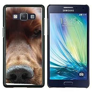 Oro Nariz Retriever perro canina- Metal de aluminio y de plástico duro Caja del teléfono - Negro - Samsung Galaxy A5 / SM-A500