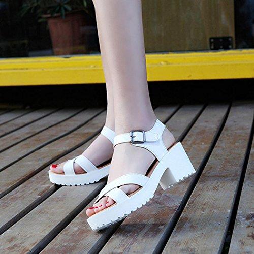 delle Peep Romani Toe Signore Sandali Scarpe Scarpe Donne bianca Infradito Sandali Estate Vovotrade Bassi c1vUAEY
