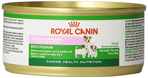 Royal Canin Canine Health Nutrition Mother & Babydog Birth Program Starter Mousse Canned Dog & Puppy Food, 5.8 Ounce Can (Pack of 24)