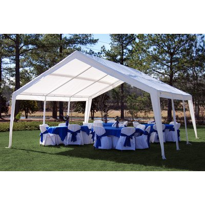 King Canopy 12 x 20 ft. Expandable (Hercules Canopy Carport)