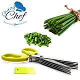 Herb Scissors Multipurpose Kitchen Shears Stainless Steel 5 Blade with Cleaning Brush Chuzy Chef®