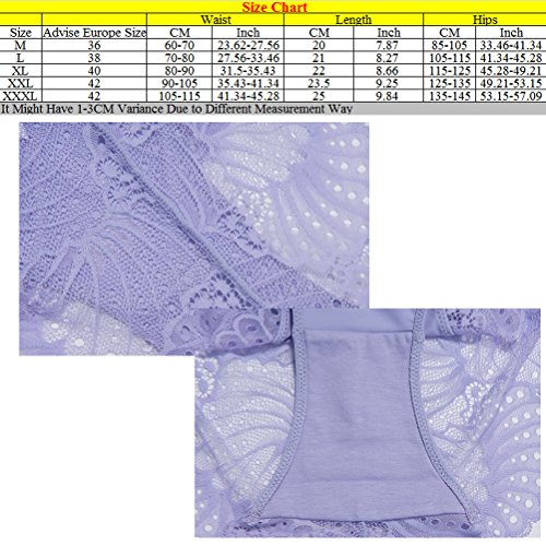 Zhhlaixing Fashion La ropa interior transpirable Seamless Womens Underwear Low Waist Lace Lingerie Underpants Blue