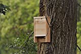 Premium Bat House | Made in USA | Western Red Cedar | Ready to install | Ideal Bat Shelter for hot to warm climates | Environmentally Responsible Eco-Friendly Mosquito Control | Cedar