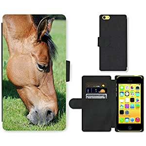 Super Stella Cell Phone Card Slot PU Leather Wallet Case // M00106552 The Horse Meadow Horses Animal // Apple iPhone 5C