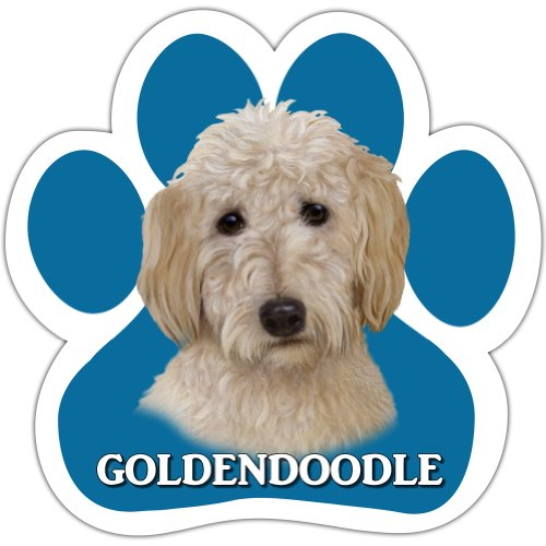 Goldendoodle Car Magnet With Unique Paw Shaped Design Measures 5.2 by 5.2 Inches Covered In UV Gloss For Weather Protection]()