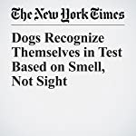 Dogs Recognize Themselves in Test Based on Smell, Not Sight | James Gorman