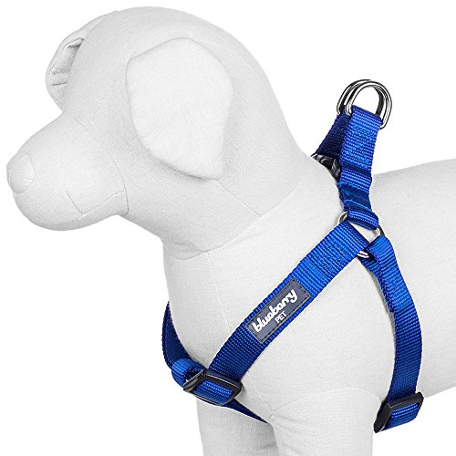 Blueberry Pet 19 Colors Step-in Classic Dog Harness, Chest Girth 26 - 39, Royal Blue, Large, Adjustable Harnesses for Dogs