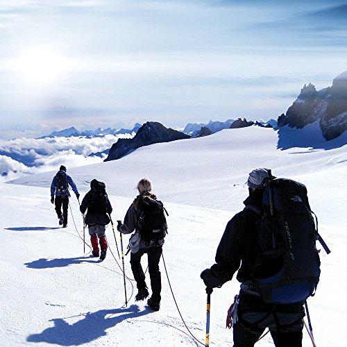 JESBAN Trekking Poles Walking Hiking Sticks (1-Year Warranty)