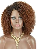 Kalyss Ombre brown Short Afro Kinky Curly Wigs for Black Women Side Curved Part Natural Looking Big,Bouncy and Super Soft Premium Synthetic Afro Curls Wigs for Women