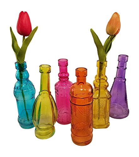 Decorative Colored Vintage Glass Bottles for Bottle Tree, the Garden, or Flower Bud Vases - Set of 6, Multicolor, 6.5-inch Bottles