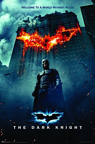 Trends International Dark Knight One Sheet Fire Wall Poster