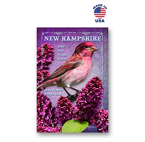 NEW HAMPSHIRE BIRD AND FLOWER postcard set of 20 identical postcards. NH state symbols post cards. Made in USA.