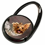 3dRose Russell Foote Photography-Dogs - Happy Yorkie - Phone Ring (phr_281491_1)