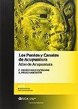 img - for Los puntos y canales de acupuntura: atlas de acupuntura book / textbook / text book