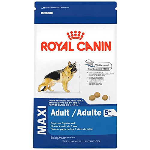 ROYAL CANIN SIZE HEALTH NUTRITION MAXI Adult 5+ dry dog food, 6-Pound