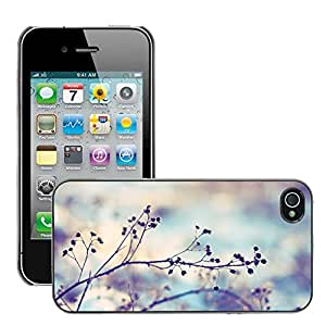 Super Stellar Slim PC Hard Case Cover Skin Armor Shell Protection // M00050974 spiky twigs bokeh aero macro // Apple iPhone 4 4S