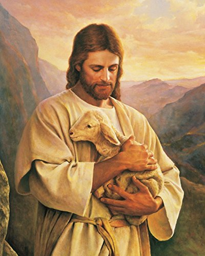 OJESUS Carrying Lamb/Christian - Christianity art poster (28x24) by skymey