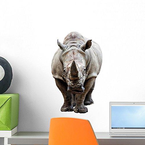 Armour Peel - Wallmonkeys Rhino Wall Decal Peel and Stick Animal Graphics (18 in H x 14 in W) WM314337