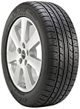 Fuzion Touring All-Season Radial Tire - 225/55R16 99V