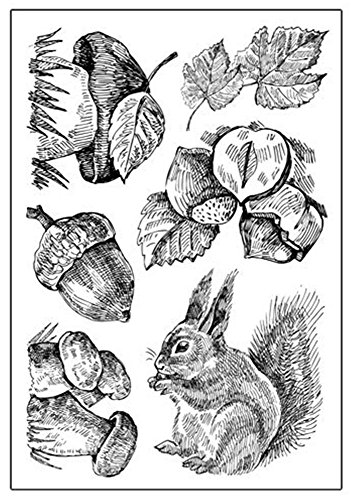 Layhome Scrapbook Embellishments Stamp Clear Stamping Printing Albums Cards DIY Making (Squirrel)
