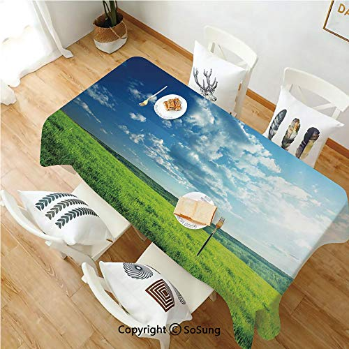 Nature Rectangle Polyester Tablecloth,Refreshing Meadow Valley Under Cloud Sun Sky Spring Grass Country Image,Dining Room Kitchen Rectangle Table Cover,60W X 102L inches,Lime Green Light Blue]()