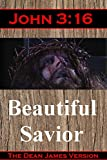 john 3 16 beautiful savior the life and sacrifice of the christ