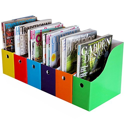 Evelots Magazine File Holder-Organizer-Full 4 Inch Wide-6 Colors-W/Labels-Set/6]()