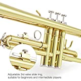 Eastar Gold Trumpet Brass ETR-380 Standard Bb Trumpet Set For Student Beginner With Hard Case,Gloves, 7 C Mouthpiece, Valve Oil and Trumpet Cleaning Kit