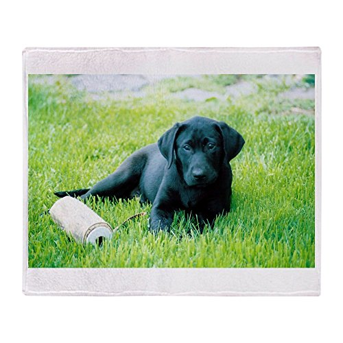 CafePress - Black Lab Puppy - Soft Fleece Throw Blanket, 50