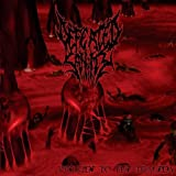 Prelude To The Tragedy by Defeated Sanity