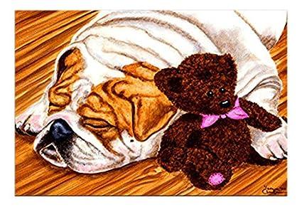 Caroline tesoros del amb1003mat Bulldog Inglés y oso de peluche de interior o al aire libre