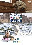 Special Interest - Mutsugoro No Yukaina Dobutsu Zukan Series Kogataken No Miryoku To Sono Nazo, Okami - Yasei No Kokoro - [Japan DVD] PCBP-12150