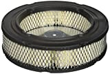 Stens 054-179 Kawasaki 11013-0728 Air Filter